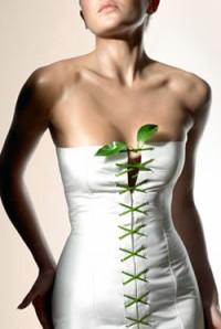 Дієта для краси і здоров'я