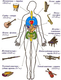 Post image for Влияние музыки на организм человека