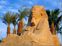 Нюанси відпочинку в Єгипті